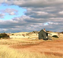 Storm Clouds over Marsh and Dunes by Roupen  Baker