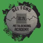 Bei Fong Metalbending Academy by Rachael Thomas