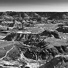 The badlands(Alberta) by sbc7