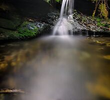Upper Fairy Bower Falls in Portrait by Justine King