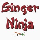Ginger Ninja! by Vince Fitter