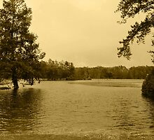 Pembroke Creek Flooding by WeeZie