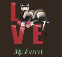 LOVE My Ferret by Lotacats
