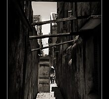 Vietnam - Hoi An - Old Lane  by Malcolm Heberle