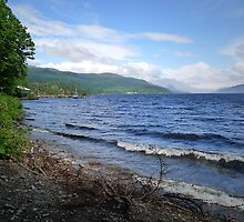 Loch Ness Shoreline by triciamary