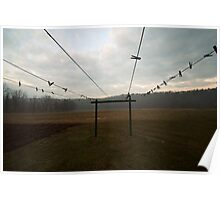 clotheslines Poster