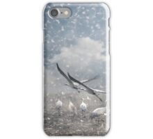 The cranes of Fischland iPhone Case/Skin