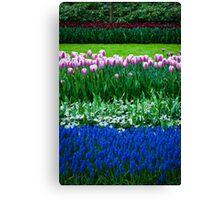 Tulip Layers @ Keukenhof Canvas Print