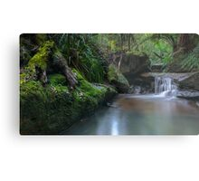 Dimmocks Creek Feeder Metal Print