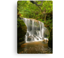 Blue Mountains waterfall Canvas Print