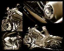 Harley Davidson by Caryl Perry