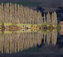 Reflecting in Meadowbank Lake by Traffordphotos