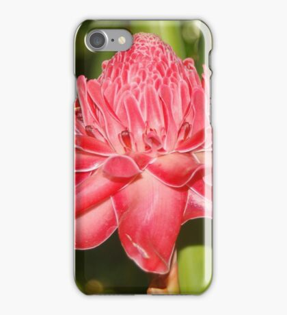 Red Torch Ginger. iPhone Case/Skin