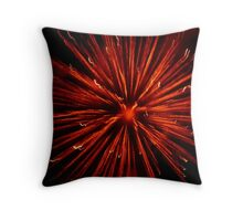 2012 Red Fireworks Throw Pillow