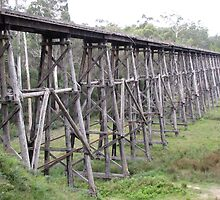 Stoney Creek Trestle Bridge, Victoria by DianneLac
