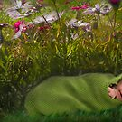 Gorgeous Little Grub by Tainia Finlay