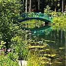 Giverny in the Sierras by Barbara  Brown