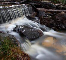 Stewart's Stream - Stewarts Bay, Tasmania by clickedbynic