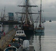 Brixham Harbour by Shelagh Linton