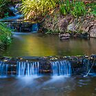 Rustic waterfall by Rudi Venter