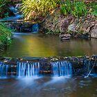 Rustic waterfall by Rudi Venter