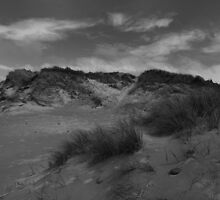 Elemental Sand Dune - Texture and Skies by rennaisance