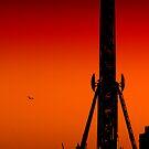 Brighton Wheel Sunset by Dean Messenger