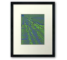 Mirror Man Framed Print