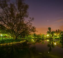 Pre-Dawn over the pond. by Rudi Venter