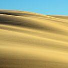 Shape of the Wind by Anton Gorlin