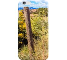 New Mexico Fence iPhone Case/Skin