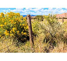 New Mexico Fence Photographic Print