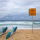 No Swimming by Anton Gorlin