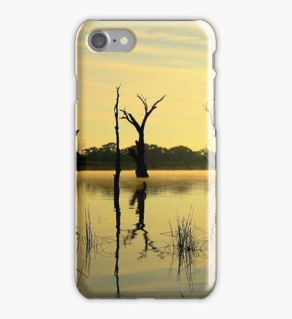 Sculptures in the Lake iPhone Case/Skin
