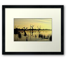 Sculptures in the Lake Framed Print