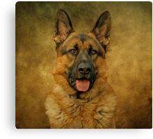 Chance - German Shepherd Canvas Print