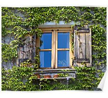 Ivy Covered Window. Poster