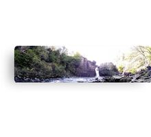 HIGH FORCE WATER FALLS Canvas Print