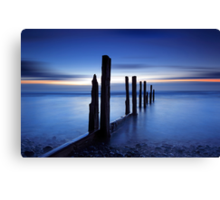 Blue Tide Canvas Print