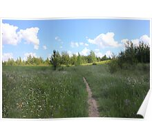 Hiking Trail through Meadow Poster