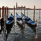 Venetian Winter Morning by Mike Church
