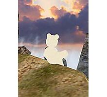 teddy bear watching the sky Photographic Print