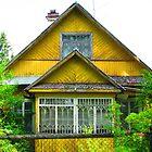 Unrefined Neon Yellow Dacha of Kartashevskaya by M-EK