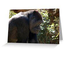 Gorilla Profile Greeting Card