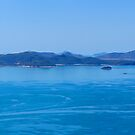 Whitsunday Islands by Anton Gorlin