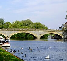 Workman Bridge and The River Avon  by Rod Johnson
