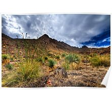 Franklin Mountains Poster