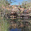 Galvans Gorge, Kimberley, Western Australia by Margaret  Hyde