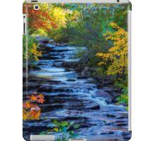 Color Alley iPad Case/Skin