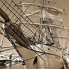 Barque Picton Castle by Poete100